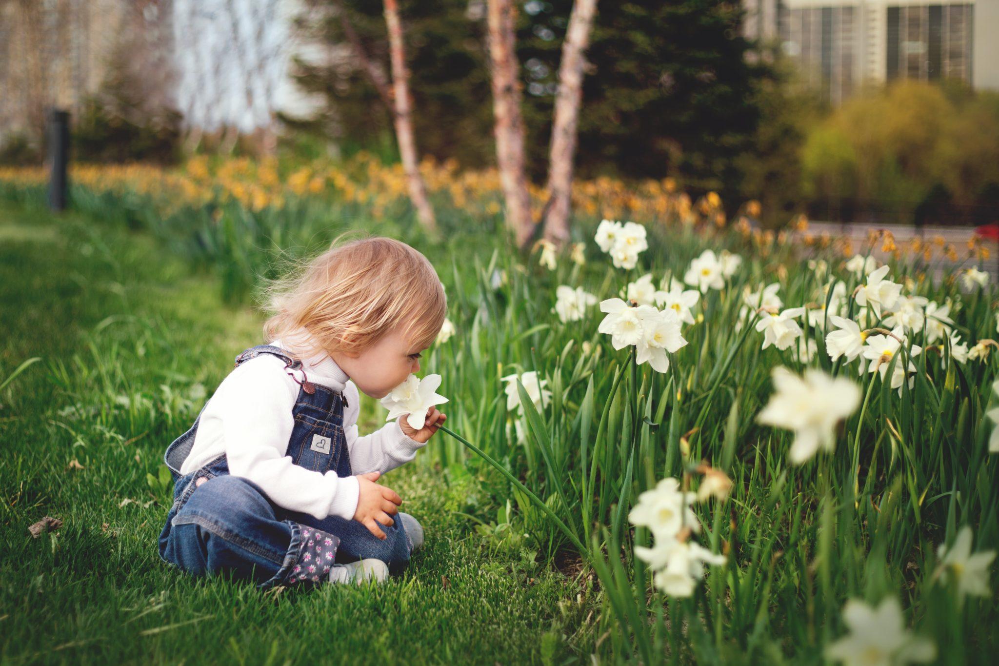 C'est le printemps bébé fleur